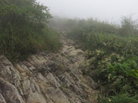 霧の天山 110