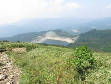 モウセンゴケ天山 182