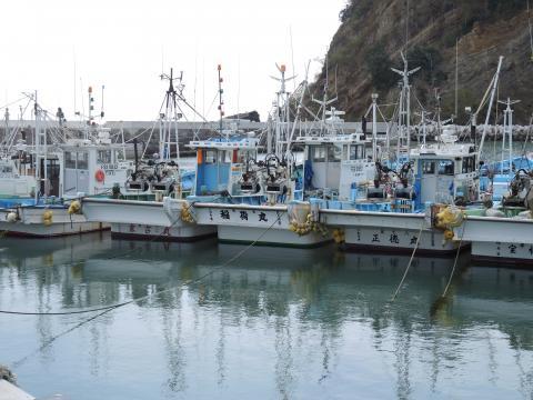 いわきの漁業 2