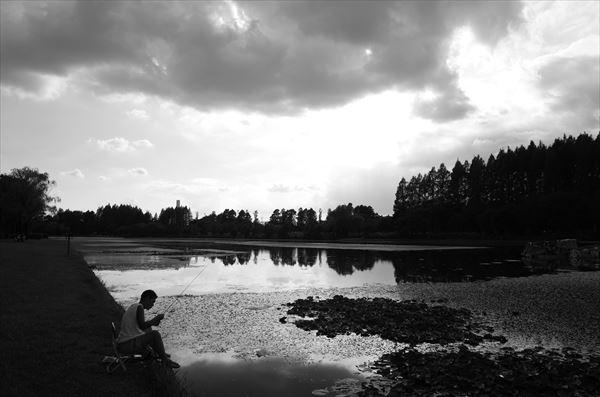 釣り人at水元公園