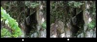 平行法型立体視画像