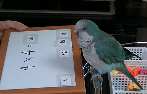 数式の掛け算1_6