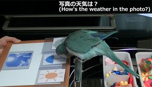 天気1_10