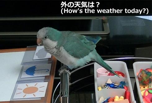 天気1_13