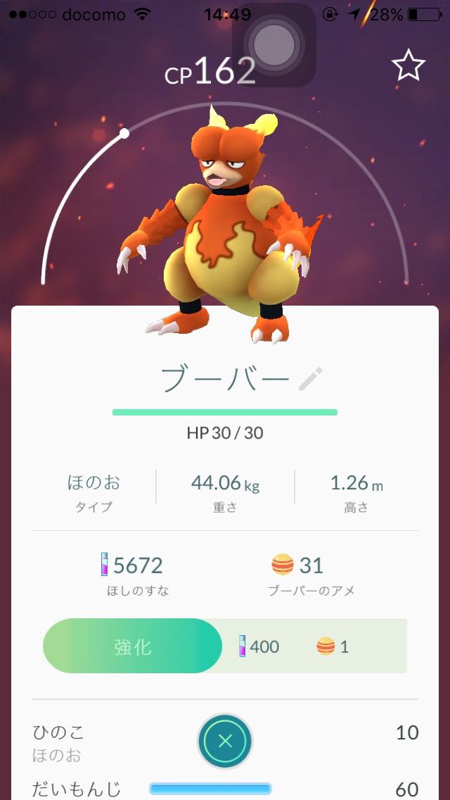 S__117276674.jpg