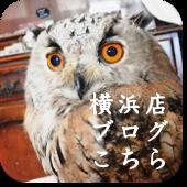 しあわせをよぶふくろうの城 横浜店