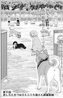 犬の放牧場