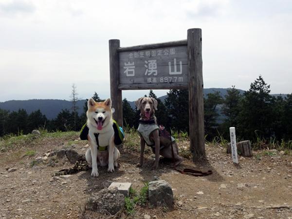 1604岩湧山