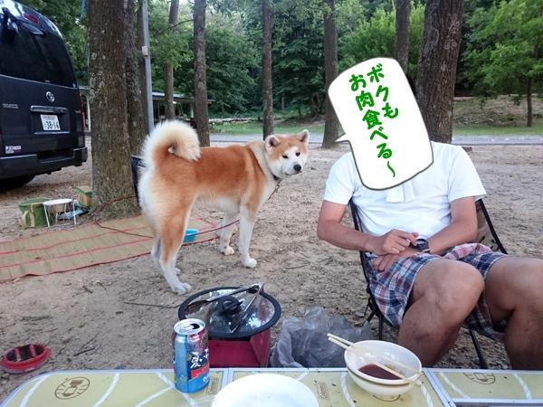 b_20160720_11.jpg