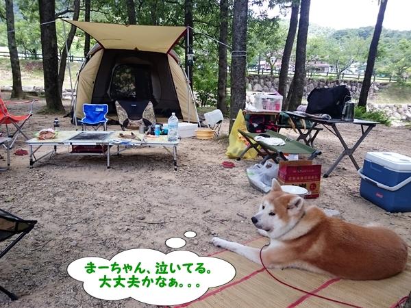 b_20160721_22.jpg