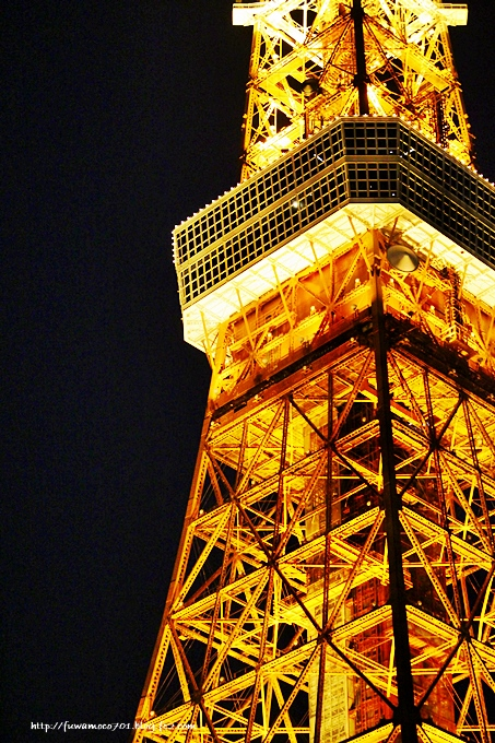 チビプードルモコの毎日☆東京タワー1
