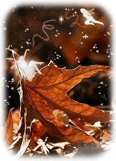秋の妖精B