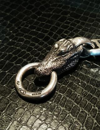 Alligator_FR_convert_20160918114331.jpg