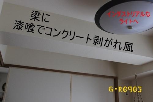 GGIMG_6510.jpg