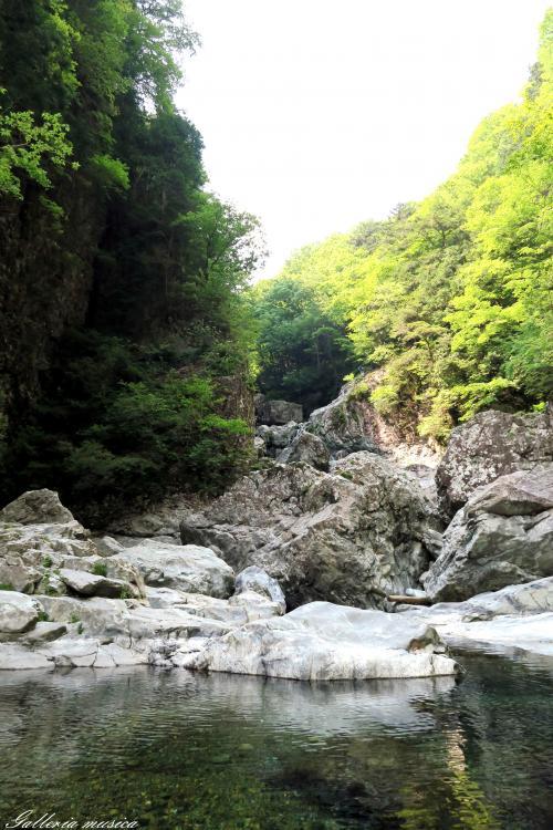 みたらい渓谷2
