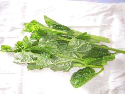 ぬめりのある野菜1