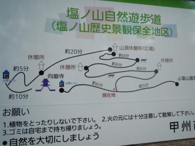 塩の山遊歩道2