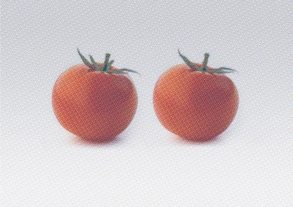 tomato160601