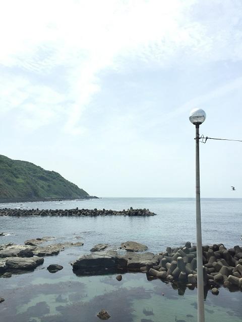 鶴岡市立加茂水族館 漁匠ダイニング 沖海月 2