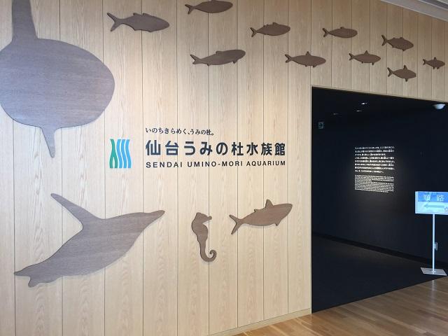 仙台うみの杜水族館2