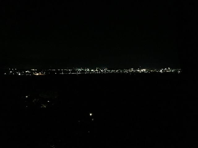 飯森山公園 あじさい園 あじさいライトアップ7