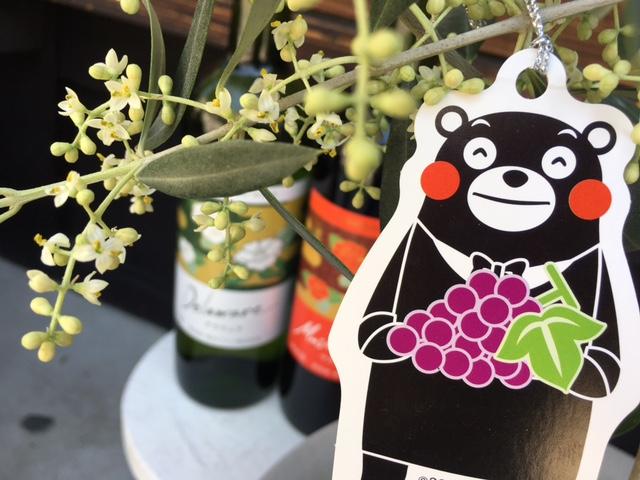 2016 05 13 熊本ワイン-3