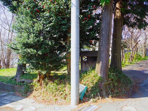 「日野市№45遺跡(平山古墳)」