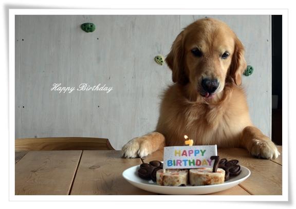 DSC_7693誕生日ケーキ前でペロン