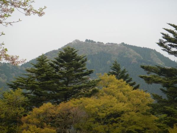 大岳山 102