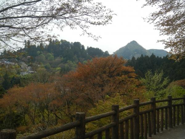 大岳山 101