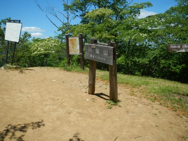 川苔山 044