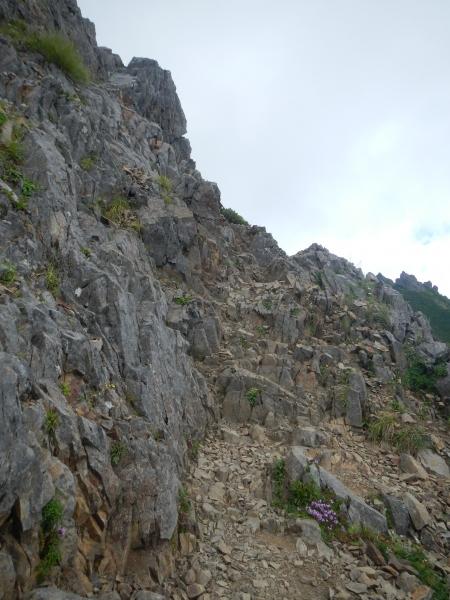 八ヶ岳 066