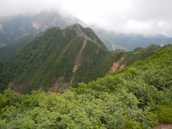 八ヶ岳 074