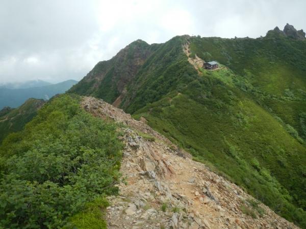 八ヶ岳 075