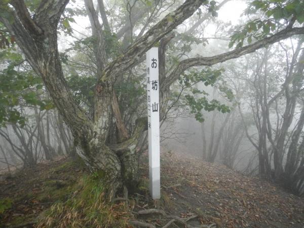 笹子連嶺 028