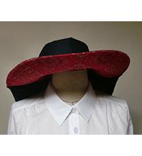 紫外線対策ブリムの大きい帽子