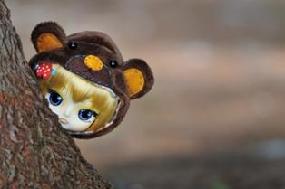 Peeping bear
