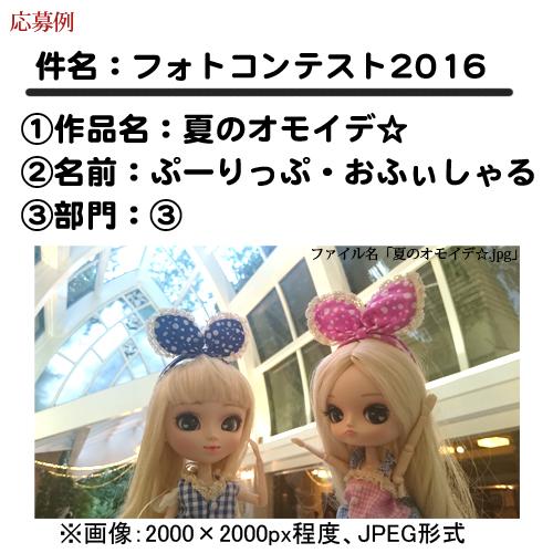 photocon_ex.jpg