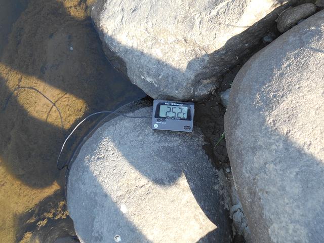 20160731水温