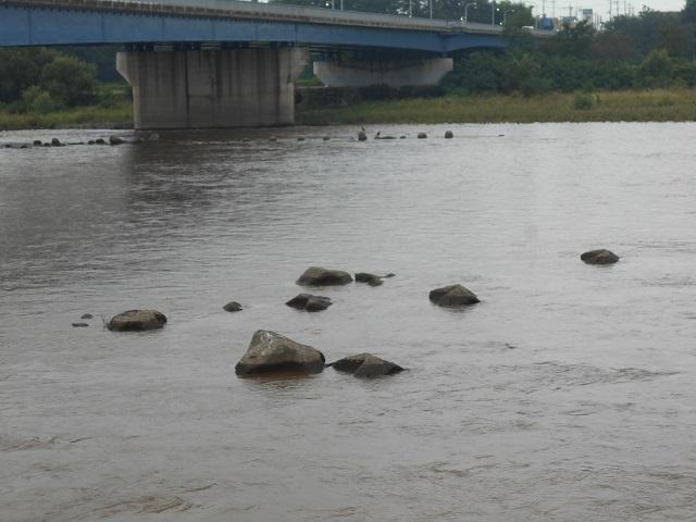 DSCN1057大渡橋上流09.16