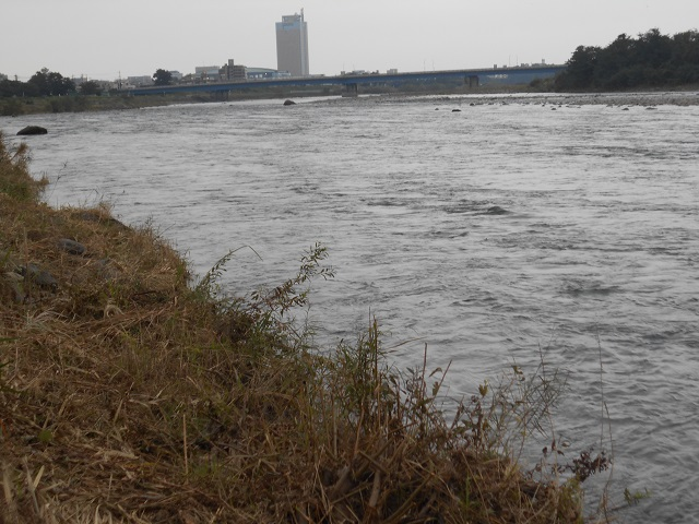 DSCN1192冬季ニジマス釣り場管理棟前より下流10.08.jpg