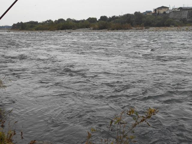DSCN1193冬季ニジマス釣り場上流より下流を撮影10.08.jpg