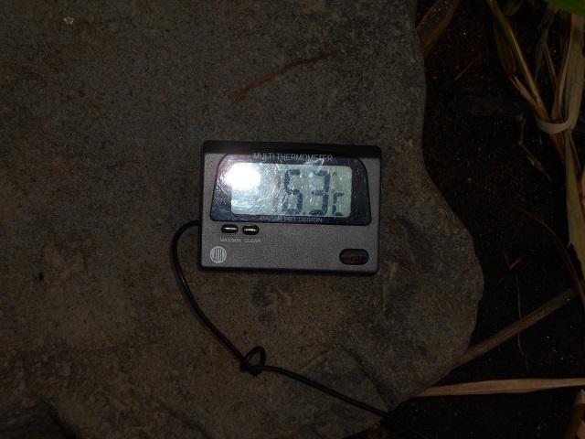 DSCN1191冬季ニジマス釣り場管理棟前10.08.jpg