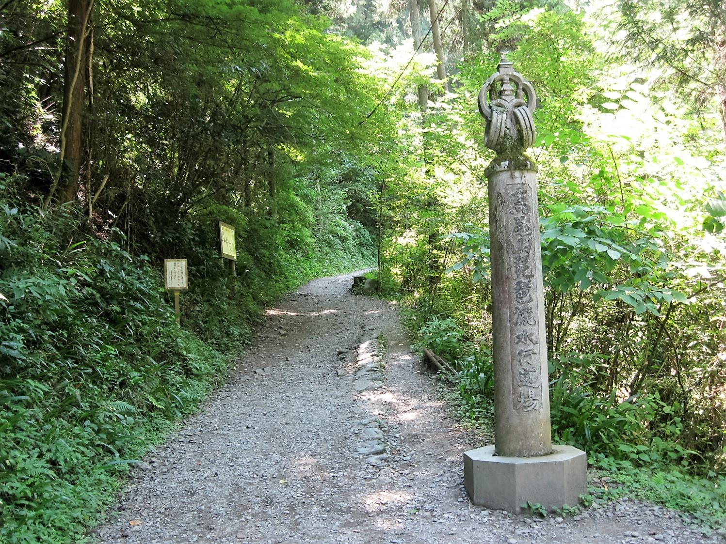 高尾山 号路 ダイエット ウォーキング 景色 吊り橋 頂上