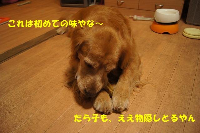 DSC07078.jpg