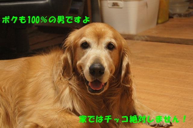 DSC07125_2016092619471286e.jpg