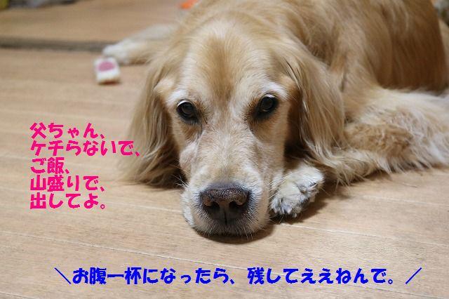 IMG_1491.jpg