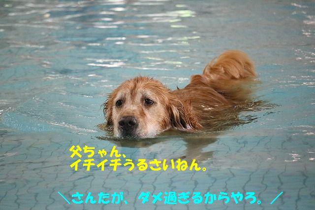 IMG_2536_20160905200633d0d.jpg