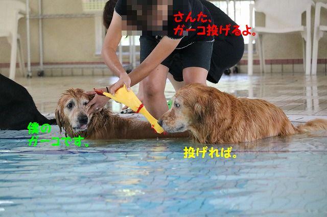 IMG_5135.jpg