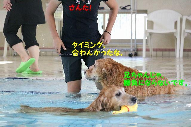 IMG_5146.jpg